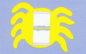 aranha-corredica-05