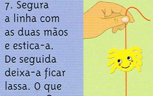 aranha-corredica-07