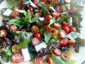 salada-d-tomates-moonblushp