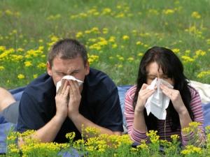 alergias-frequentes