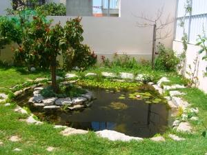 lago-no-jardim