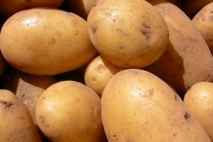 batatas-uso-domestico
