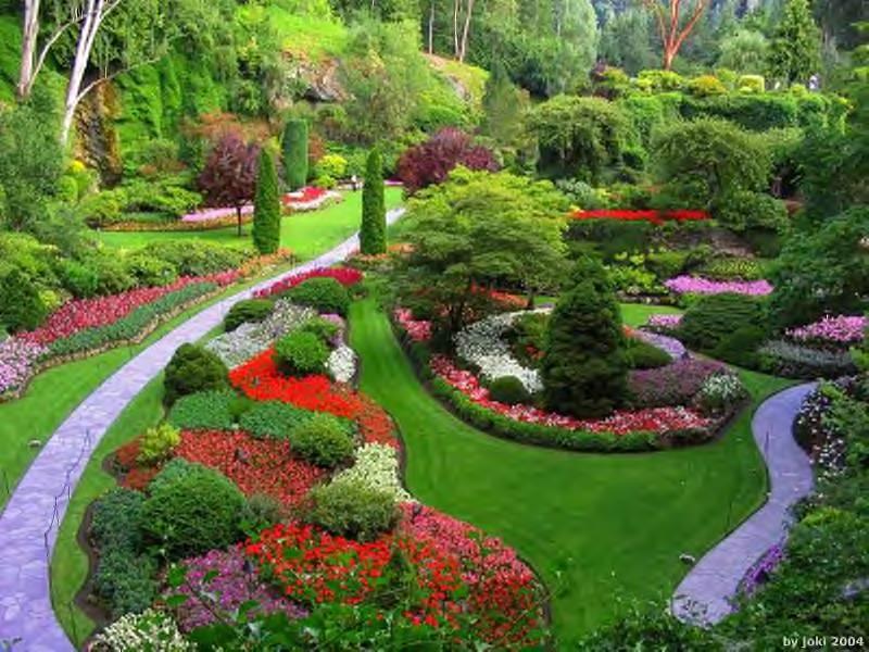 jardim bonito pouco dinheiro