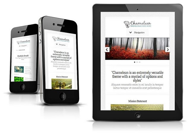 chameleon-responsive-wordpress-theme