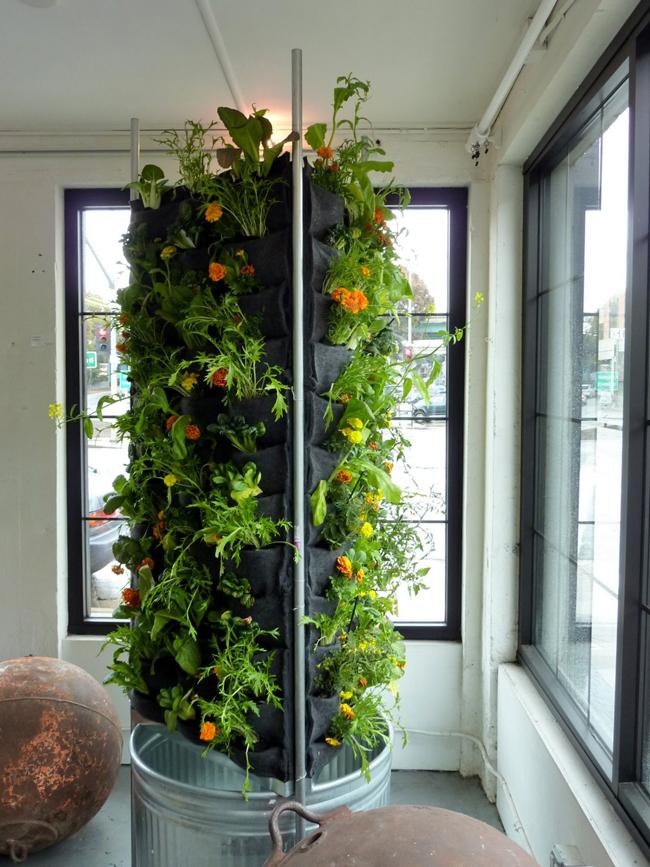 jardim vertical simples:Como fazer um jardim vertical simples – Como Fazer